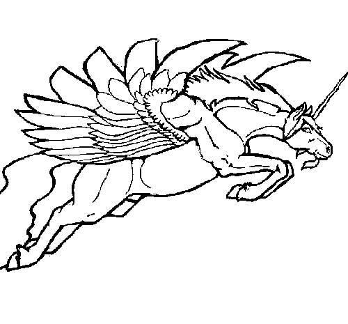 com-asas