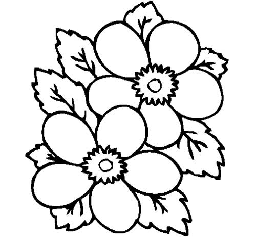 desenho de flores para pintar desenho flores coleo vectors