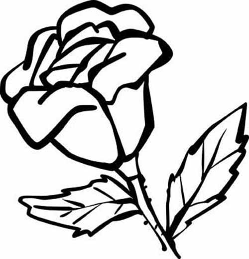 50 desenhos de flores para colorir pintar em casa for Plantas ornamentales para colorear