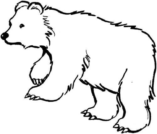 Desenhos De Urso Para Pintar Ted Puff Kung Fu Panda