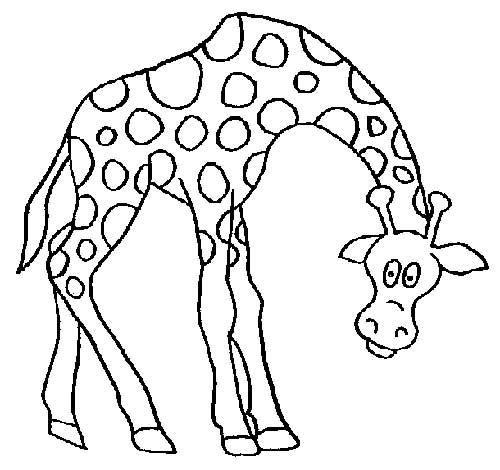 Desenhos-de-Girafa-1