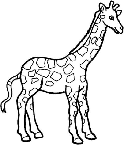 Desenhos-de-Girafa-2
