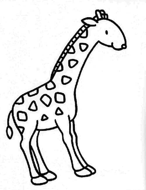Desenhos-de-Girafa-3