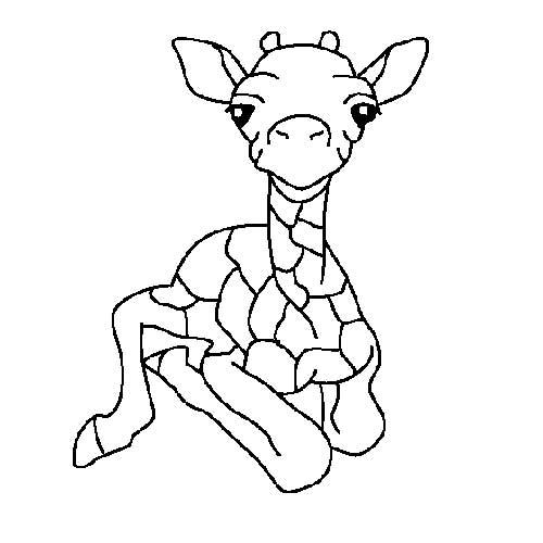 Desenhos-de-Girafa-4