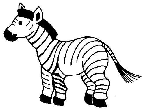 Desenhos-de-Zebra-3