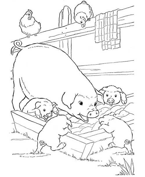 desenhos-da-fazenda