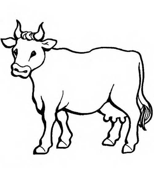 35 desenhos de fazendinha para colorir gr tis - Dessiner une vache facile ...