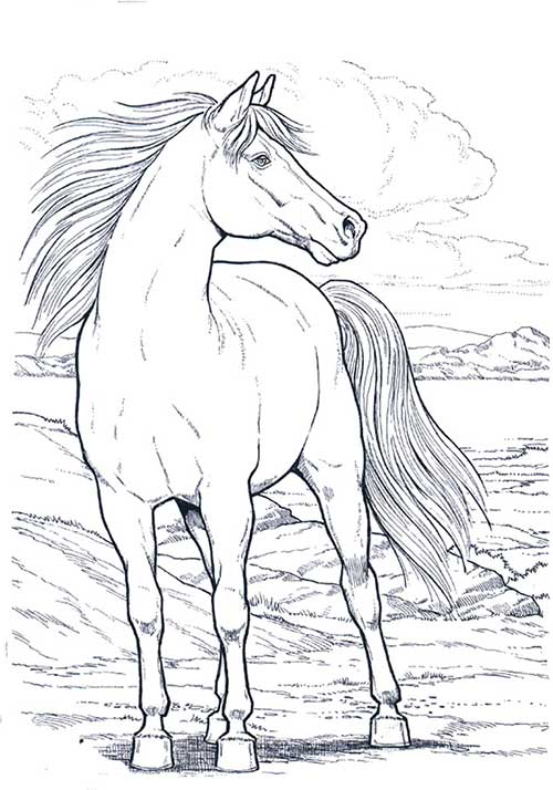 desenho-de-cavalo-1
