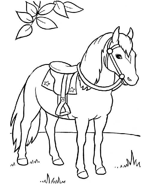 20 desenhos de cavalos para colorir pintar - Chevaux a colorier et a imprimer ...
