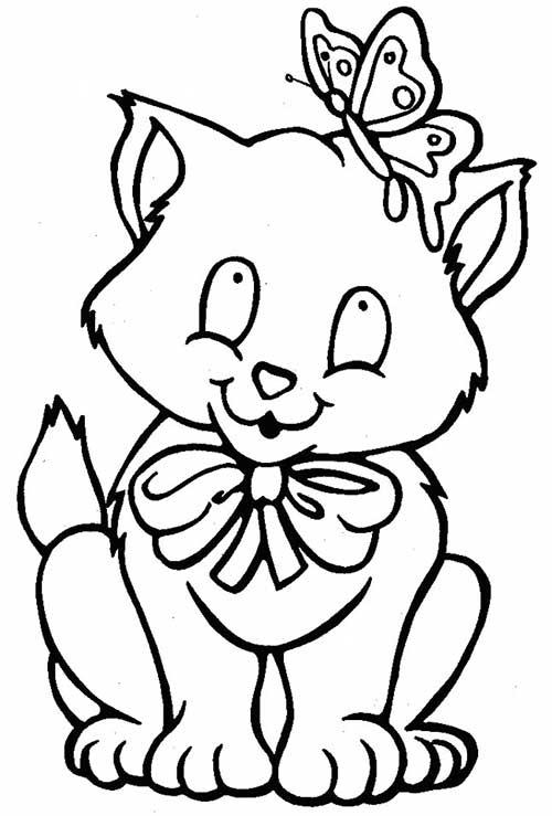 gato-1