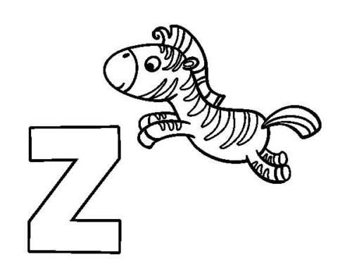 zebrinha preta