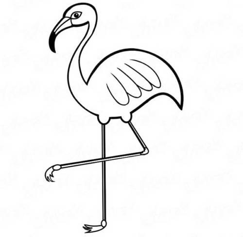 Desenhos Divertidos de Flamingo para Baixar e Pintar em Casa!