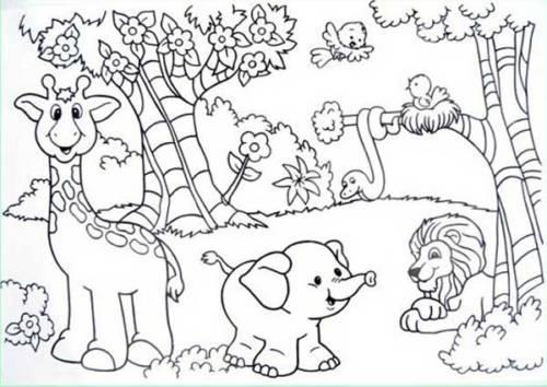 45 Desenhos De Florestas Bosques E Matas Para Colorir Em Casa
