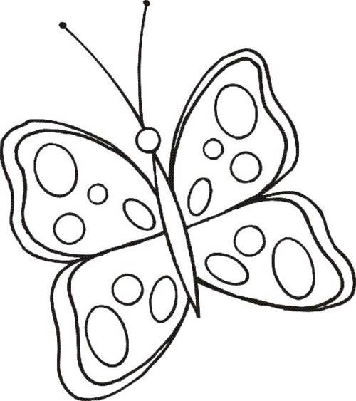 desenhos para pintar de borboletas