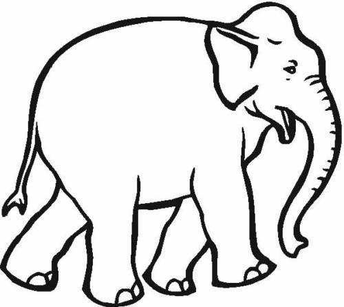 desenhos de elefantes para pintar
