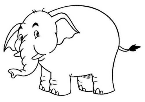 67 Desenhos Divertidos De Elefantes Para Colorir Em Casa