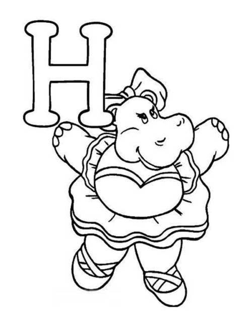 hipopótomo