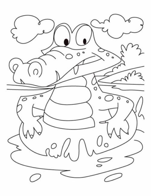 35 Desenhos De Jacare Divertidos Para Pintar Com Lapis De Cor
