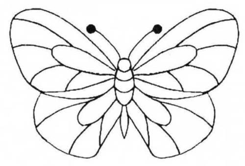 insetos felizes