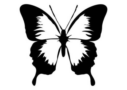 modelos de desenho de borboleta