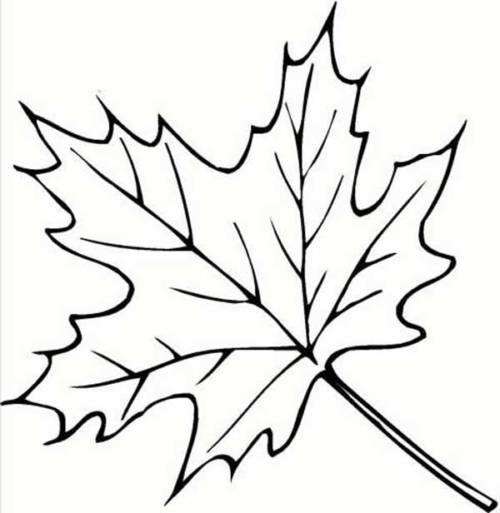 67 Desenhos Infantis De Outono Para Pintar Colorir Divertido